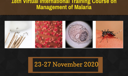 18th Virtual International Training Course on Management of Malaria